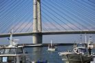 泉だこ-田尻漁港